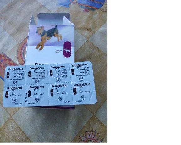 Drontal Plus -обезпаразитяване за кучета 8 бр.