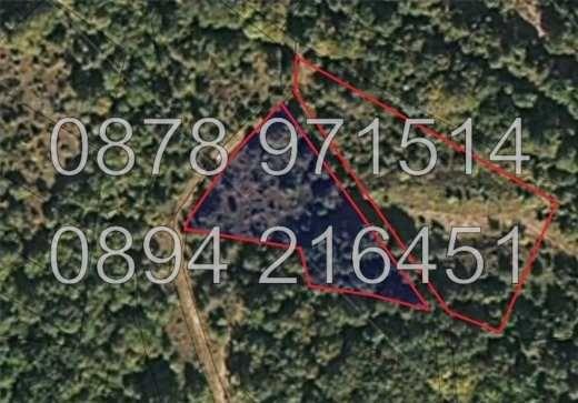 Две съседни ниви с площ 4400м2 в с. Извор до вили - код 14947