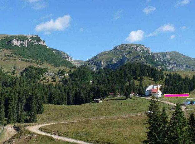 Teren Pestera (Platoul Bucegi/Lacul Bolboci/Padina/Babele)