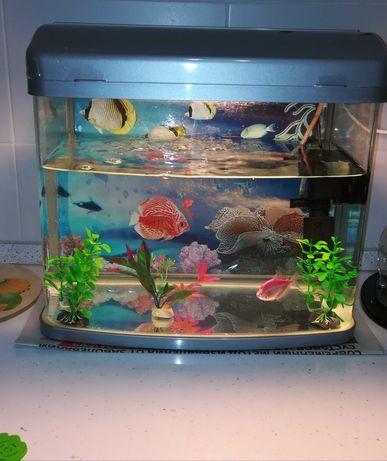Продам заводской аквариум б/у