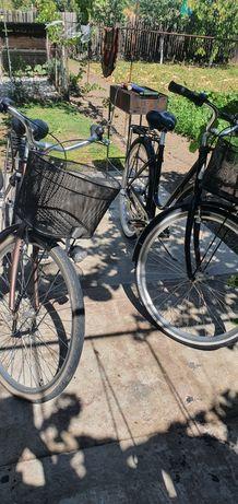 Biciclete monark