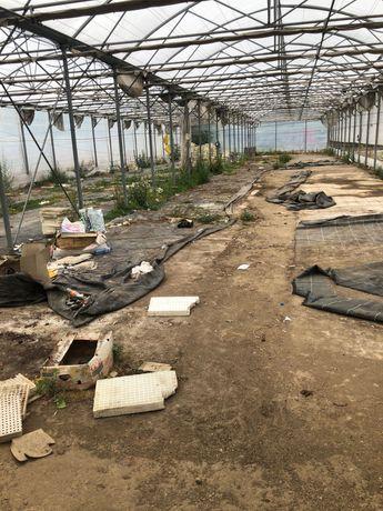Почистване на дворове и извозване на боклуци Благоевград