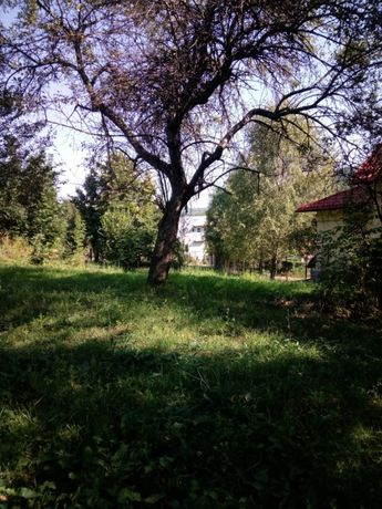 SUPER OFERTĂ! Vand Teren Pucioasa (Diaconesti). 5800 m2