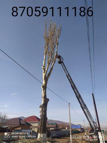 Спил деревьев любой сложности!