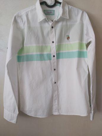US Polo ASSN детска риза за момче