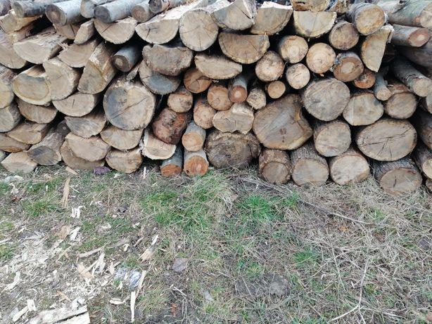 Vand lemne de foc uscate