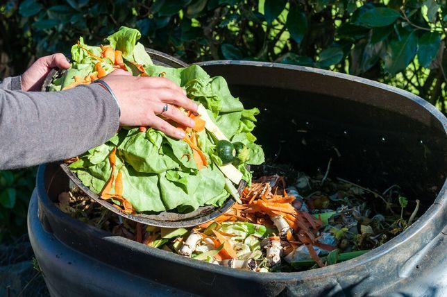 Принимаем пищевые отходы, кафе, дома, квартиры,рестораны