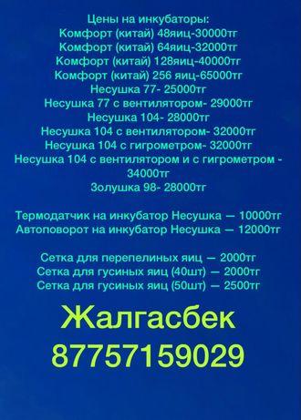 Инкубатор 104 с вентилятором Россия гарантия