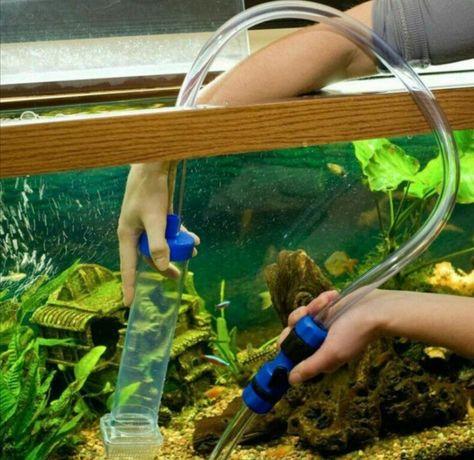 Обслуживание акварима