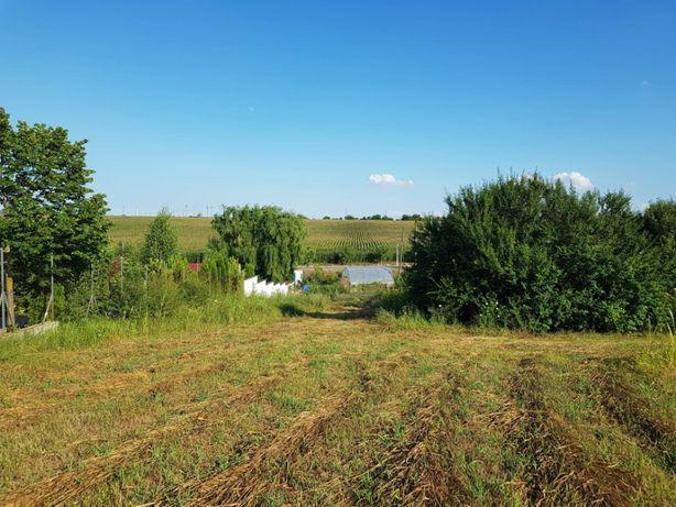 Teren Darasti-Vlasca la 22 km de Bucuresti