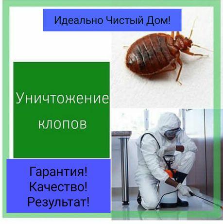 Уничтожение клопов в Алматы ! Нас РЕКОМЕНДУЮТ! Холодный Туман!СЭС!