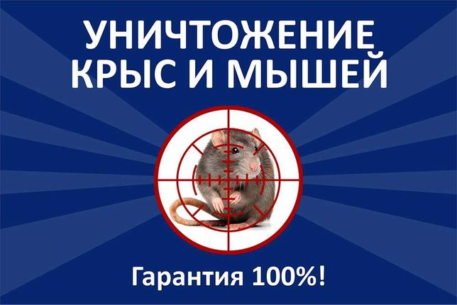 Уничтожение крыс и мышей. 100% гарантия!