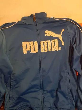 Горница (Горнище) Puma 100% Оригинал