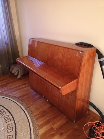 Pianina wiess
