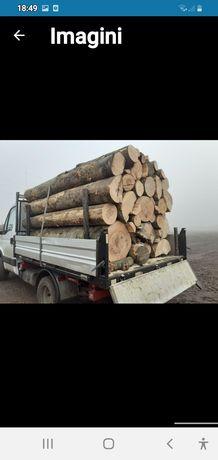 Vand lemn de foc în orice zonă