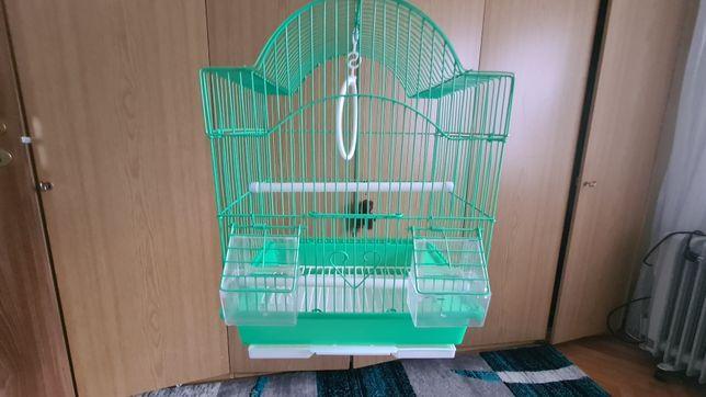 Colivie/Cusca papagali
