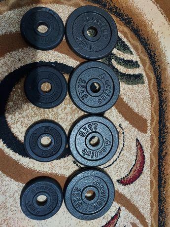 Discuri fitness/gantere/haltera/culturism