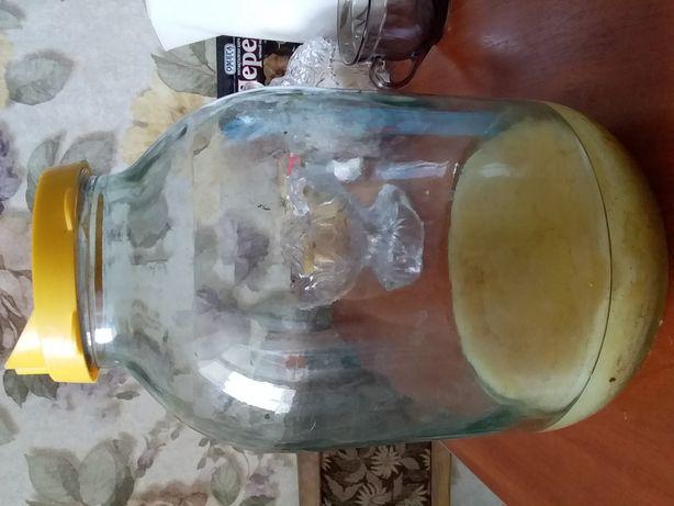 Продам лечебный чайный гриб