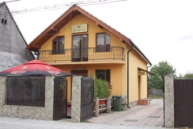 Cazare Vila Korona Satu Mare - imagine 1