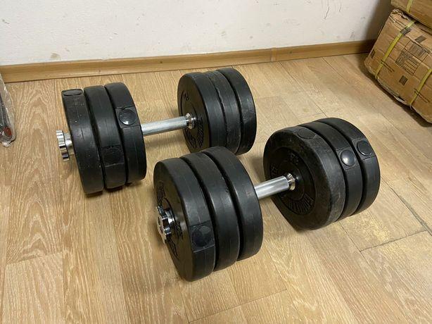 Gantere reglabile profi noi cu bari inox si piulite 36 kg,18+18=36 kg