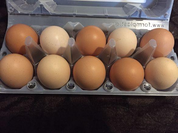 Яйца от селски кокошки