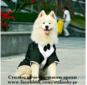 Кучешки дрехи- смокинг за средни и едри породи Смокинг за куче кучета