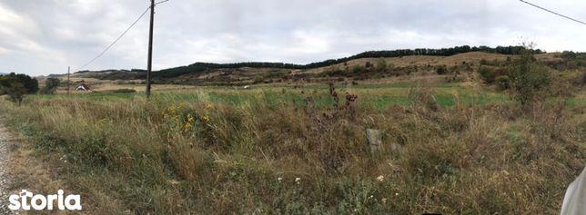 Teren extravilan de 25 ha, cu deschidere la E60 zona Acățari