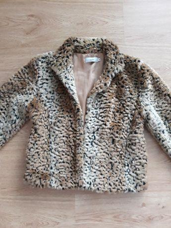 Късо палто