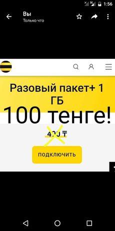 Beeline гигабайт трафика за 100