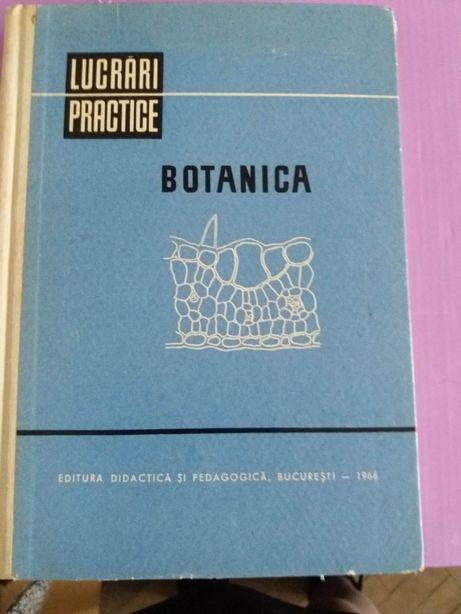 Lucrari practice botanică