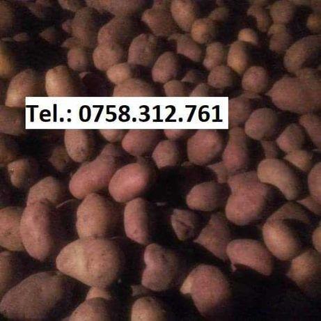Vând cartofi pt porci