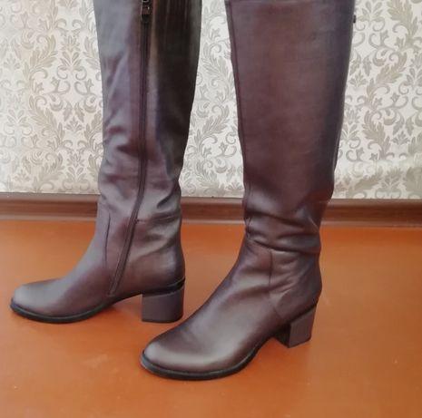 Продам новые кожаные осенние сапоги