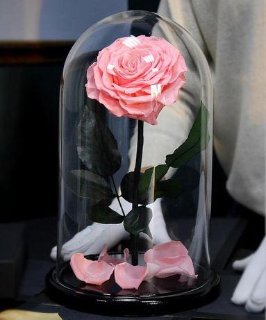 Вечная роза в колбе! Хит 2019года Лучший подарок своим любимым.
