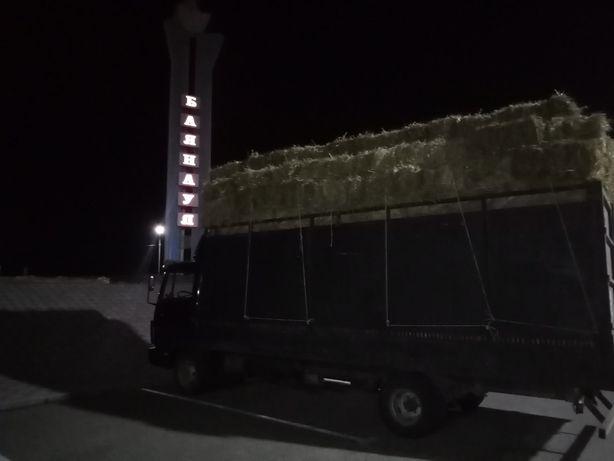 Продам ЗЕЛЁНОЕ сено луговое