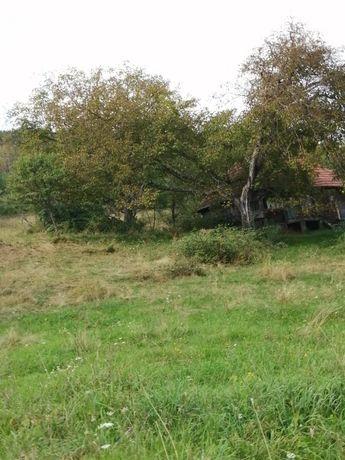 Vând teren cu casă