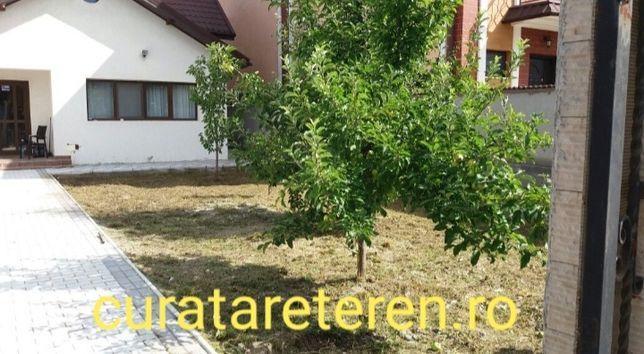 Curatare teren, defrisare / pregatire gratini / toaletare pomi