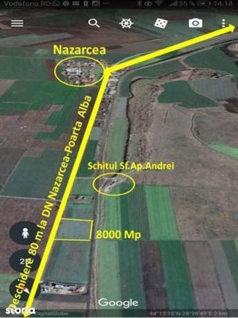 Ticu Ely Company vinde teren la Nazarcea