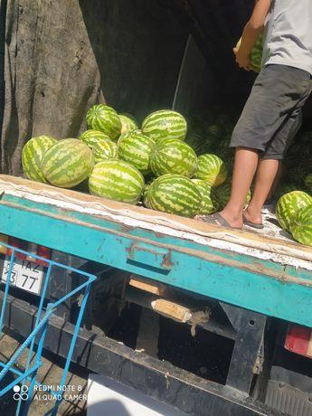 Арбуз сатылады 43 тг/кг Туркестанский бағасын келісеміз