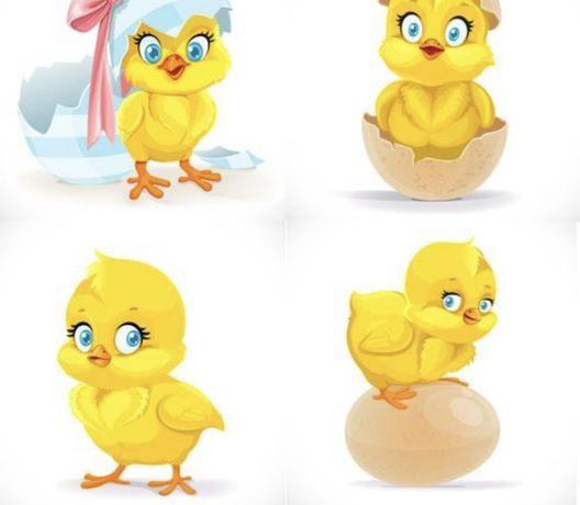 Цыплята несушки из под клушки 2-4 месяца