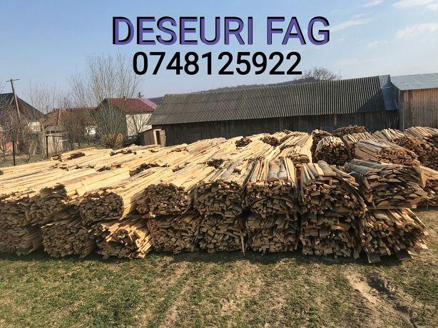 Deseuri fag lemne foc transport gratuit