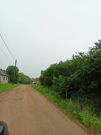 Vând teren intravilan in Ginta
