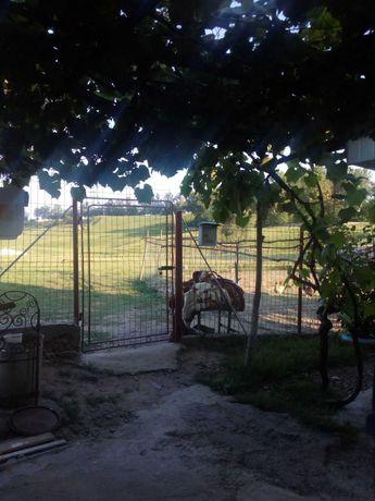 Casa  de vanzarea Bucecea