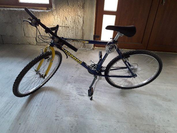 Vand bicicleta Carraro Grizzly