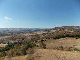 Гора 4 дка във Великотърновско