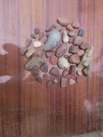 Продам камни для аквариума или террариума.