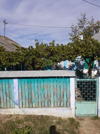 Casa cu pamant Bivolari
