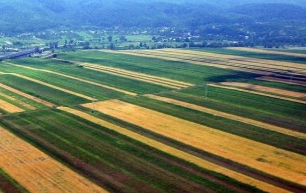 Vand 10,5 ha Comasat 100% si irigabil in sat Berlesti-Ianca.