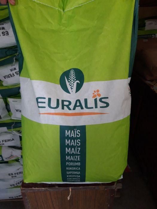 vand samanta porumb boabe, ES Faraday FAO 350 de la Euralis!