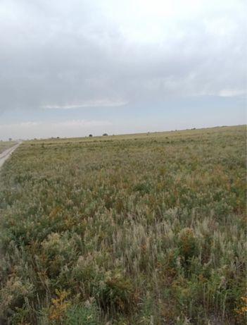Участок КХ 700 гектар