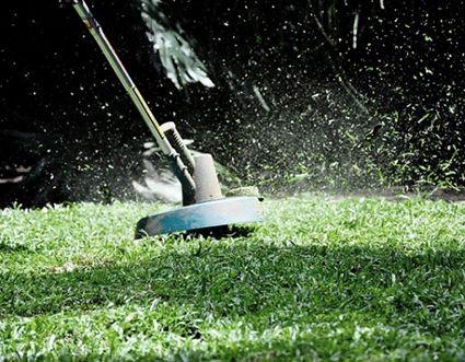 Почистване на дворове,фрезова почва, коси трева, реже дървета